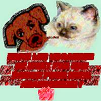 59965560abandons chats chiens gif