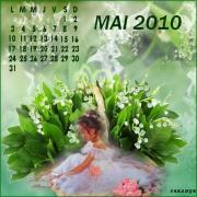 MAI-2010