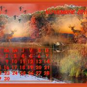 -NOVEMBRE-2010--jpg