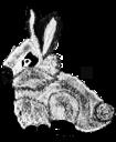 Mon petit lapin pixel coloré