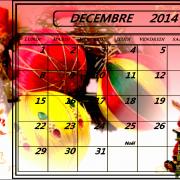 DECEMBRE 2014